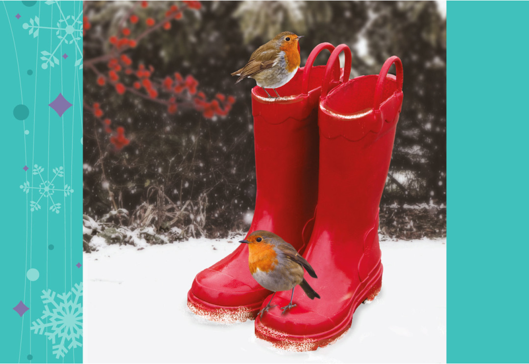 Robins on Wellies A